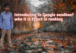 Introducing To Google Sandbox Who This effect In Ranking 2020