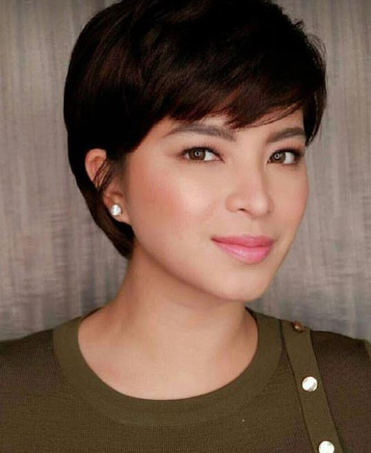 The Highlights of Angel Locsin's Career and Life in the Year 2017!