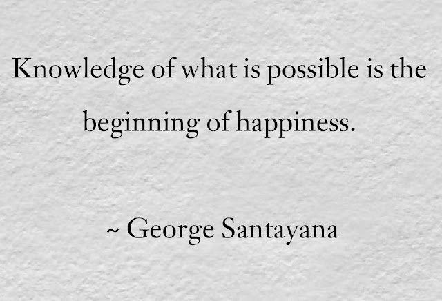 George Santayana happiness Quotes