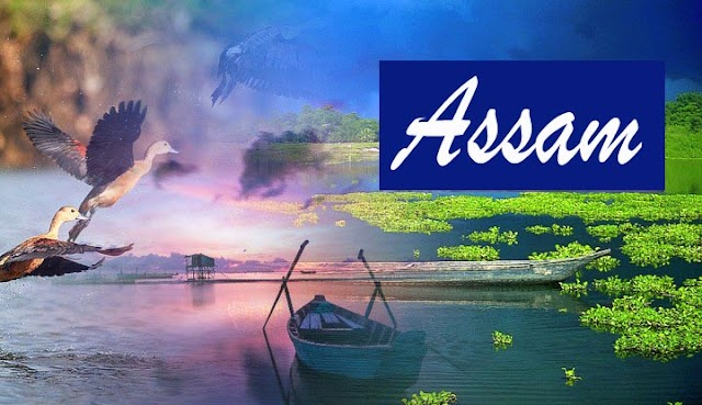 What is Assam North-Eastern States