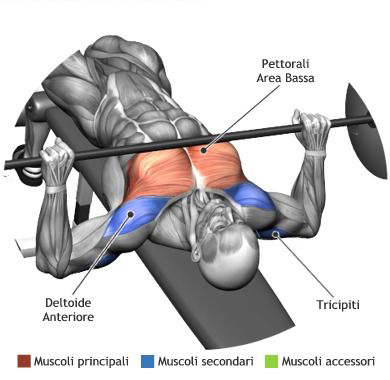 The Push/Pull Workout Plan For Muscle Gains And Fat Burning
