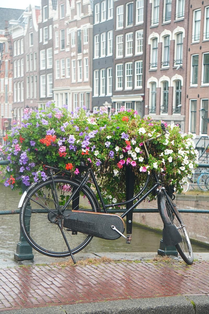Amsterdam silta