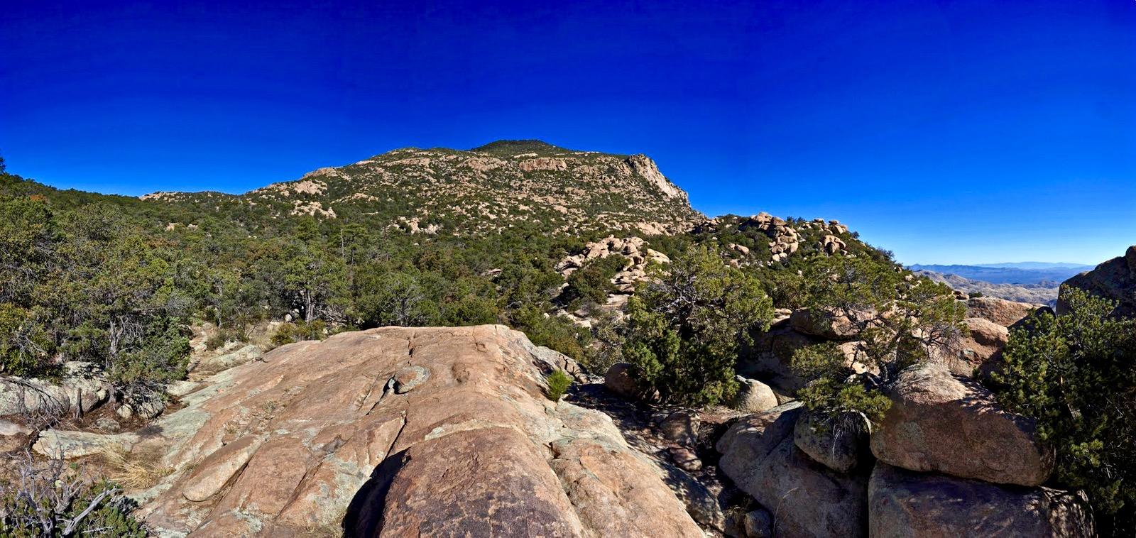 Earthline The American West Rincon Peak 8 482 Saguaro