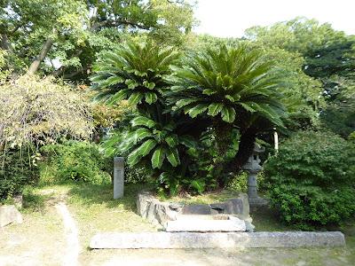 佐太天神宮の森(大阪みどりの百選)