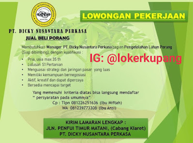 Lowongan Kerja PT. Dicky Nusantara Perkasa (Jual Beli Porang) Sebagai Manager
