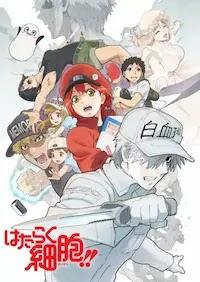 الحلقة 6 من انمي Hataraku Saibou S2 مترجم
