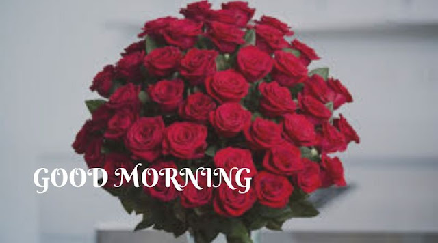 good morning rose animated images