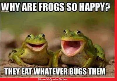 Happy Memes