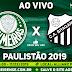Jogo Palmeiras x Bragantino Ao Vivo 11/02/2019