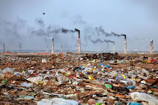 CSE's State of India's Environment Report 2021