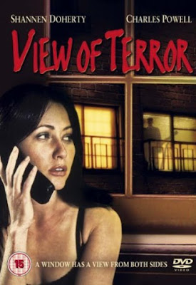 View Of Terror (2003) Dual Audio [Hindi – Eng] 720p | 480p WEBRip ESub x264 750Mb | 300Mb