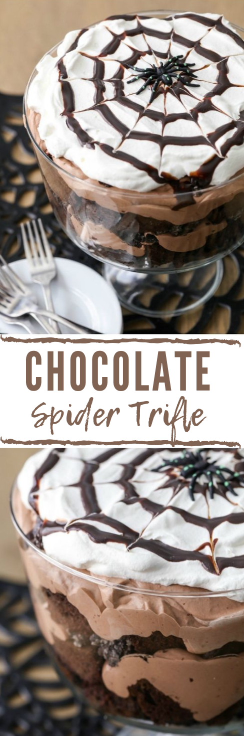 CHOCOLATE SPIDER TRIFLE #chocolate #dessert #cakes #brownies #yummy