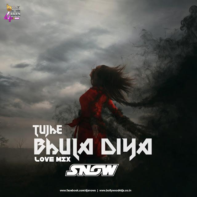 Tujhe Bhula Diya (Love Mix) Dj Snow