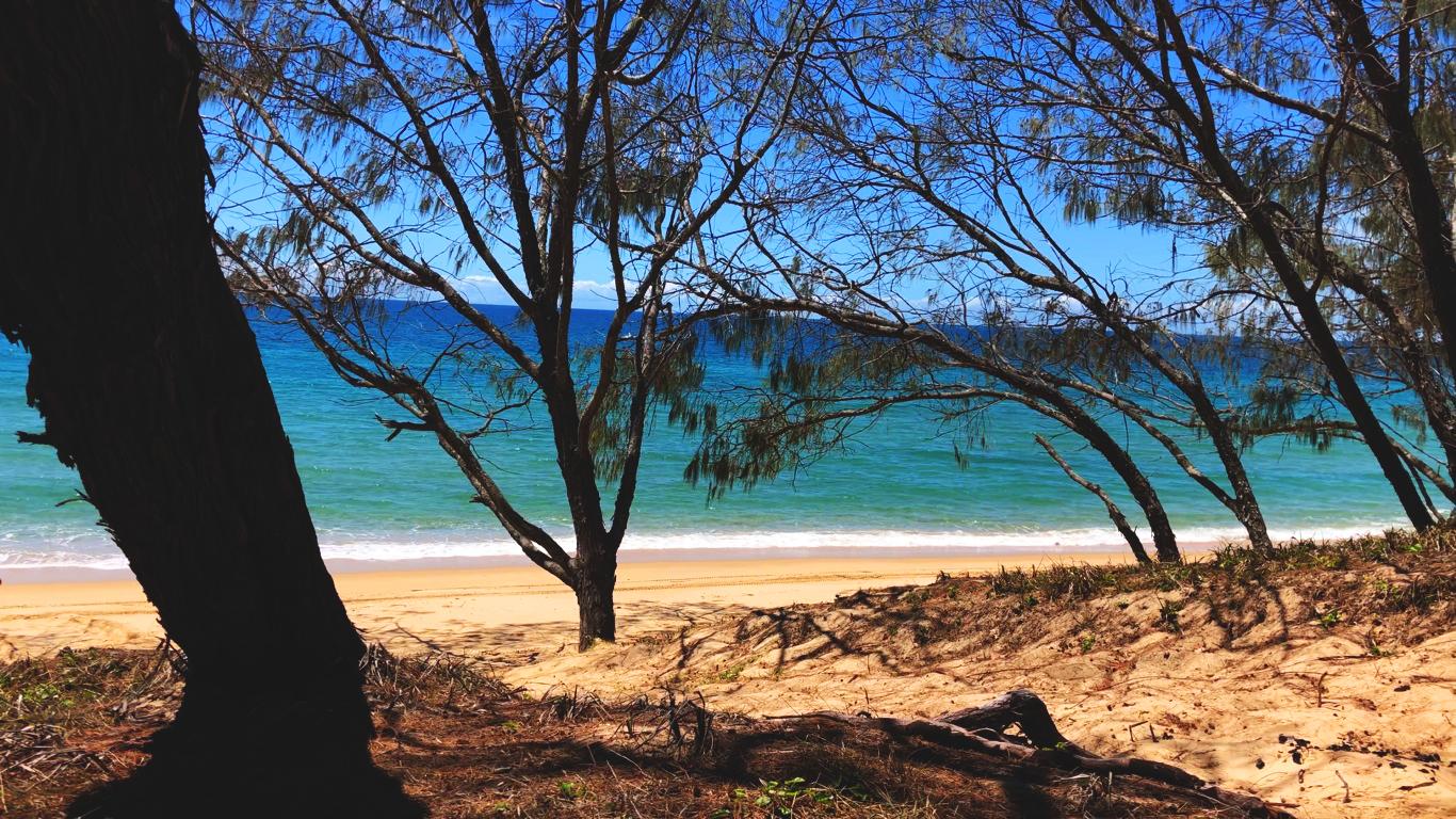 Widok na morze w Kinkuna National Park