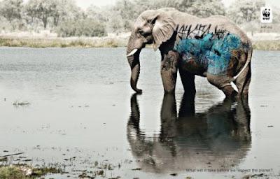 Campaña cuidar animales y el planeta