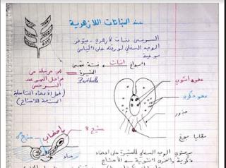 استعد لمباراة التعليم ملخصات النشاط العلمي التعليم الابتدائي