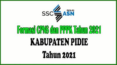 Alokasi Formasi PPPK Kabupaten Pidie