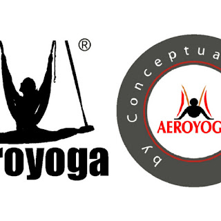 logo aeroyoga international