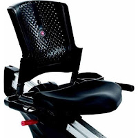 Schwinn Journey 2.5's seat, image, with padded seat bottom and vented backrest for comfort