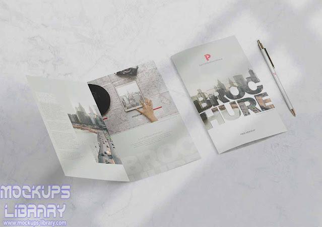 branding bi-fold brochure mockup