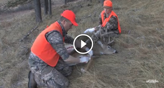 The gutless method of dressing a Deer is the best backcountry skill