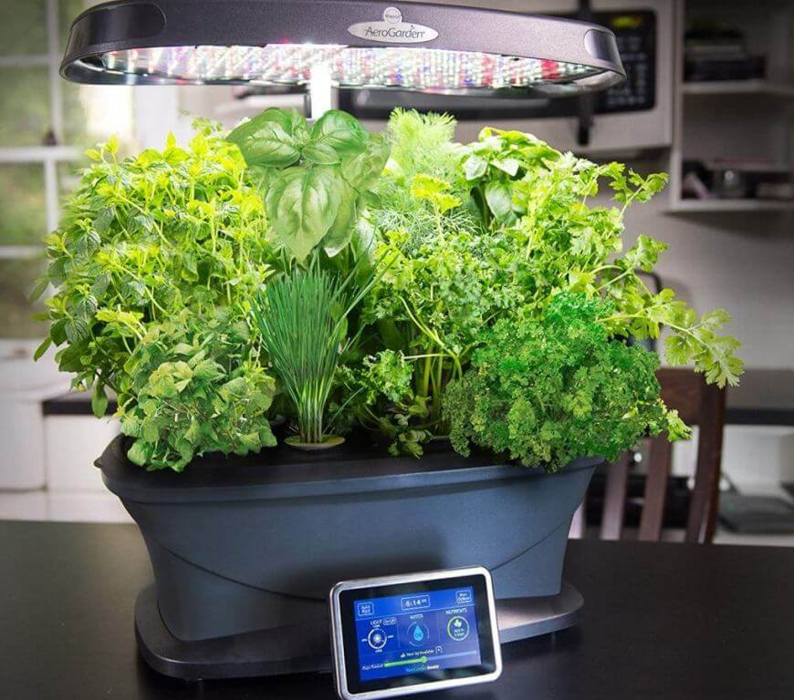 Miracle-Gro AeroGarden Bounty