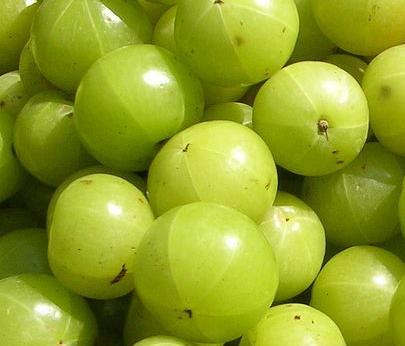 Get Much Information: Fruits - 2