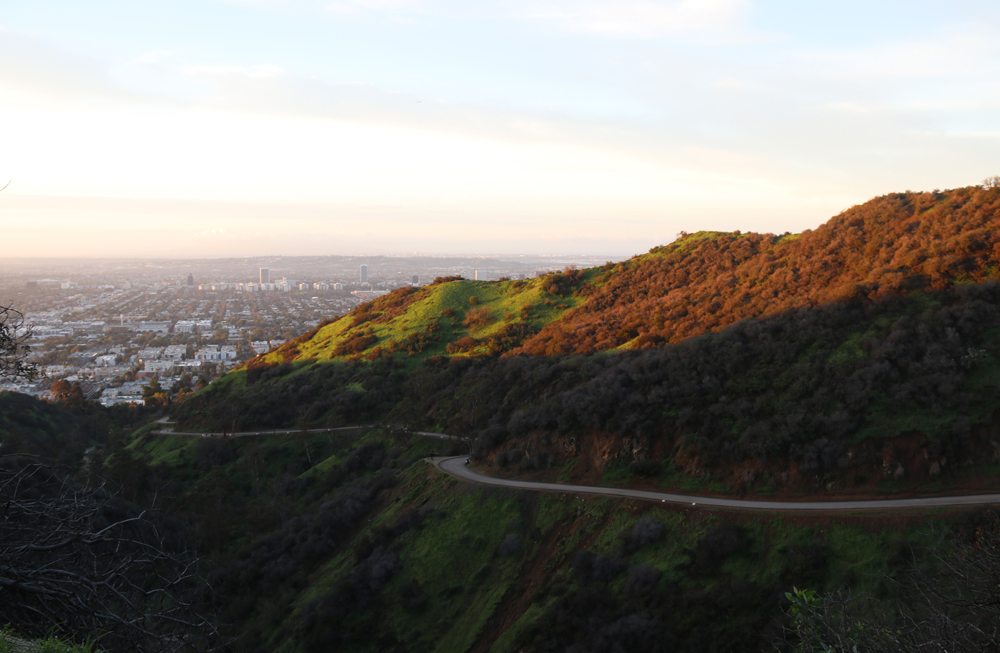 Runyon Canyon Park - Patikointia Hollywood-kukkuloilla 9