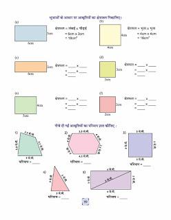 perimeter area worksheet in hindi