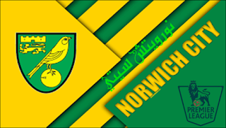 نورويتش سيتي,الدوري الانجليزي,الدوري الإنجليزي الممتاز الفرق