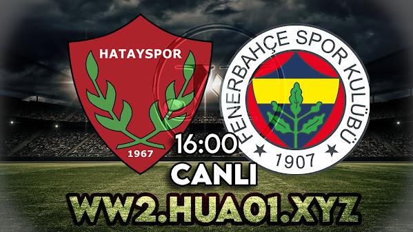 Hatayspor - Fenerbahçe maçını canlı izle