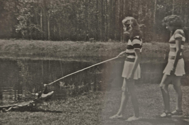 vintage everyday: When Alligator is not a Problem ...