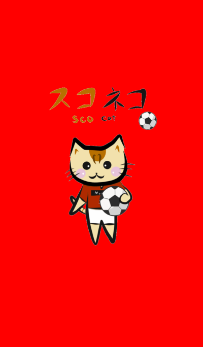 Daily ScoCat Football Ver