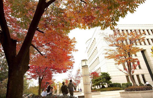 Chọn công ty có trung tâm đào tạo tiếng Hàn chuyên biệt