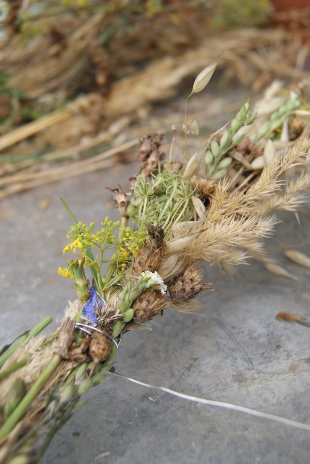 Girlande aus Samenständen und Gräsern im Hochsommer