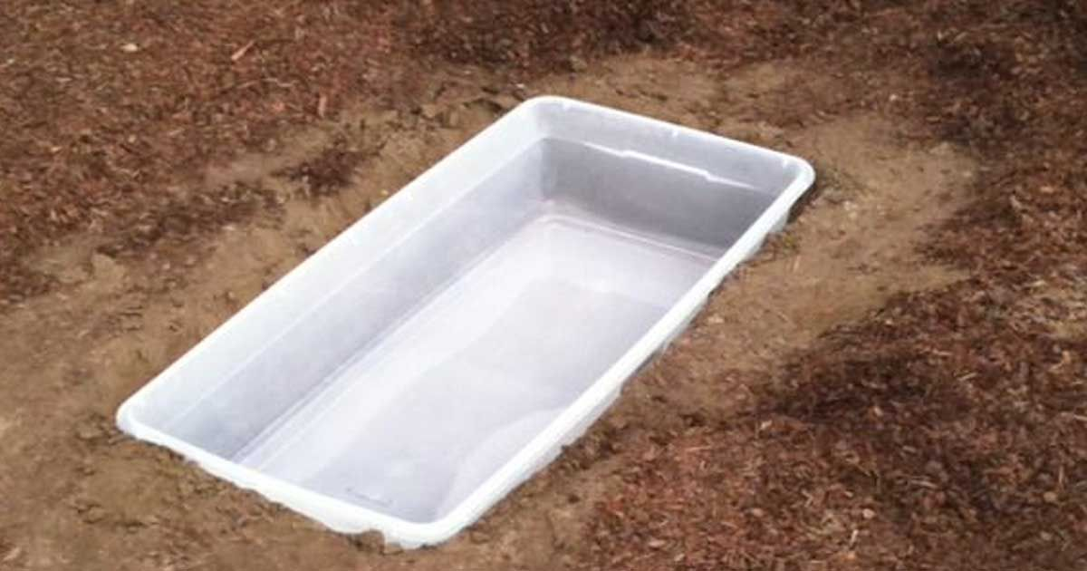 How to make a storage container garden pond handy diy for Container pond