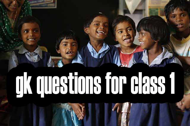 gk questions for class 1