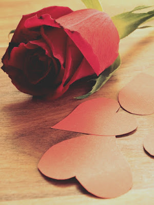 Red Rose hd images With Love Photo Download 2020
