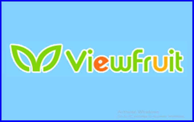 Cara dapat uang/dollar dari survey viewfruit lewat android