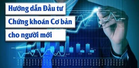 VPS Hướng dẫn đầu tư chứng khoán, Cách mua bán cổ phiếu cho người mới