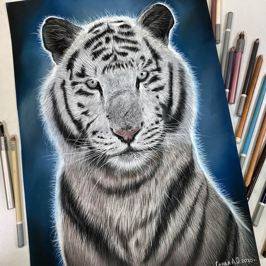 02-White-tiger-Анастасия-Серая-www-designstack-co