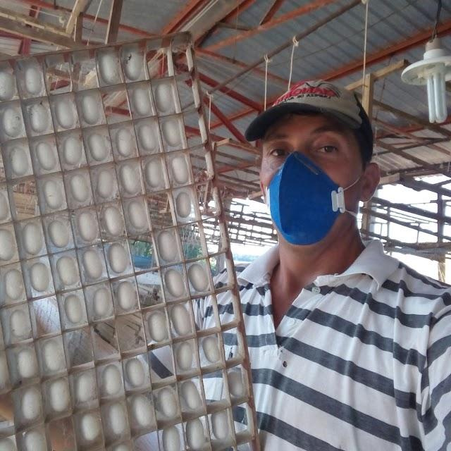Sericicultura é alternativa de renda para agricultura familiar em Araruna