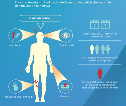 3 Zika Virus, Causes, Symptoms and How to Overcome