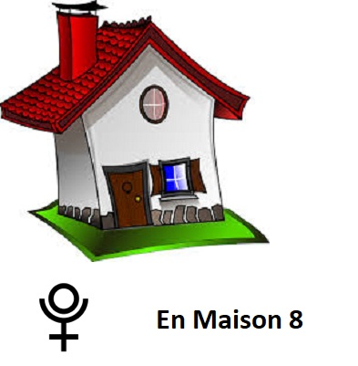Blog astrologie madameastres pluton en maison 8 for Astrologie maison