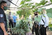 Kampung Sehat Mendorong Warga Patuhi Protokol Kesehatan