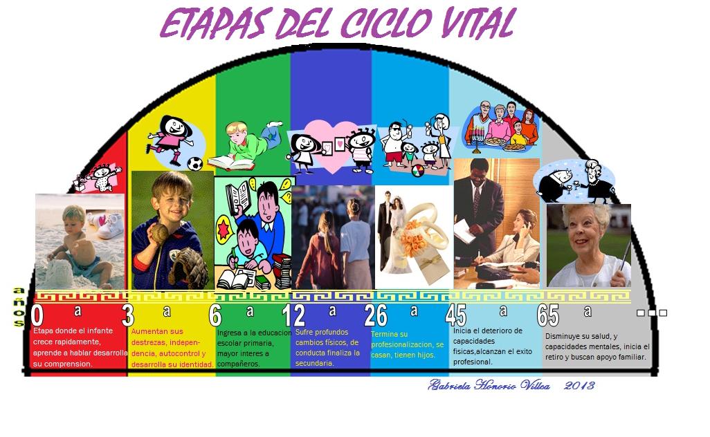 Ciclo Vital Del Ser Humano On Emaze: PSICO-DESARROLLO HUMANO Gabriela Honorio Villca