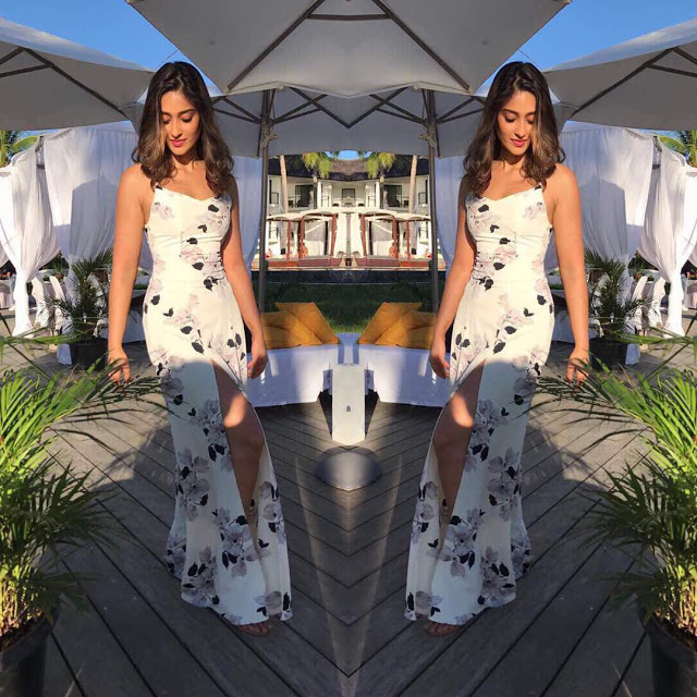 Actress Ileana Latest Spicy Hot Photos