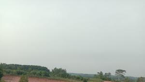 Penggalihan TKD di Desa Tambah Subur Patut di Periksa