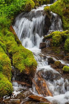 A waterfall along the Quilcene Riverl in the Buckhorn Wilderness, Olympic National Forest, Washington, USA.