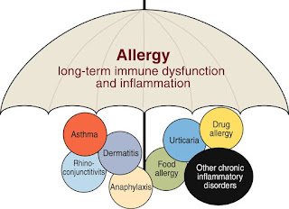 allergic tension-fatigue syndrome in adults